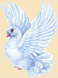 Wings clipart pretty bird Pinterest Rio php?/shop_catalog php Sleep