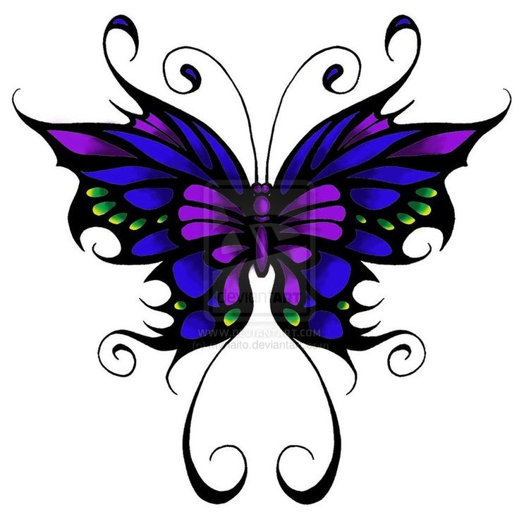 Turquoise clipart purple butterfly #13