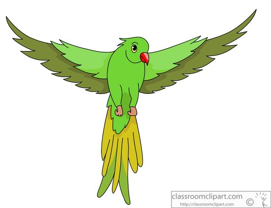 Wings clipart real bird Open parrot : collection green