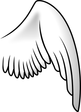 Wings clipart real bird Clip Parts Bird Wing Right