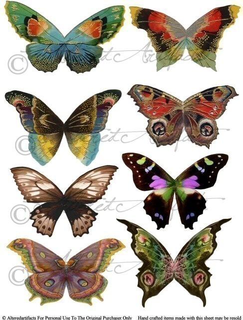 Wings clipart vintage Fairyland Fairyland Wings Fantasy Sheet