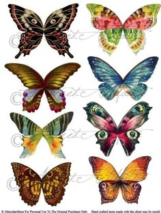 Wings clipart vintage Sheet Fairyland Wings Instant Sheet