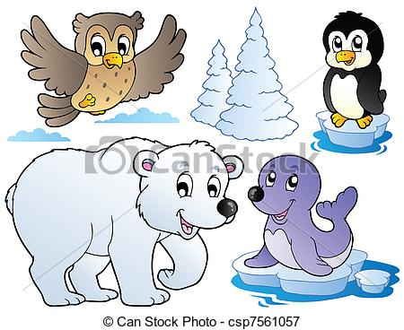 Winter clipart winter animal Vectors animals Various csp7561057 vector