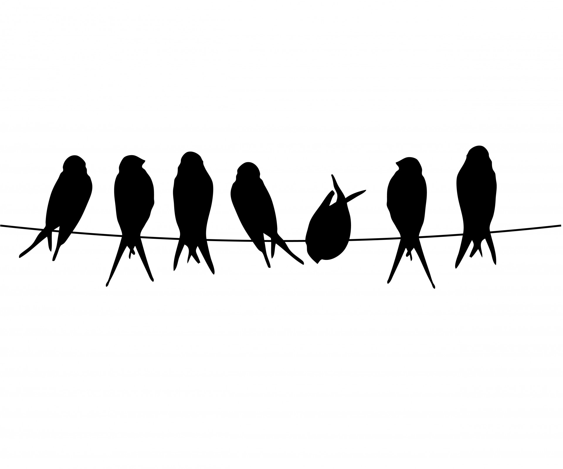 Wire clipart bird on wire Wire Stock Birds Pictures A