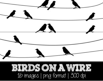 Brds clipart wire Black // // Silhouette on