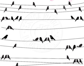 Wire clipart bird on wire Wire Birds a  Silhouette