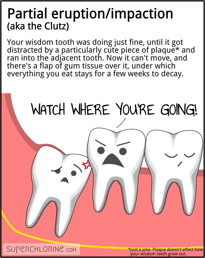 Wisdom clipart cute student Teeth! wisdom way about 20+