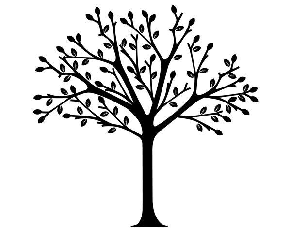Barren clipart autumn tree Wisdom Clipart wisdom%20clipart Images Panda