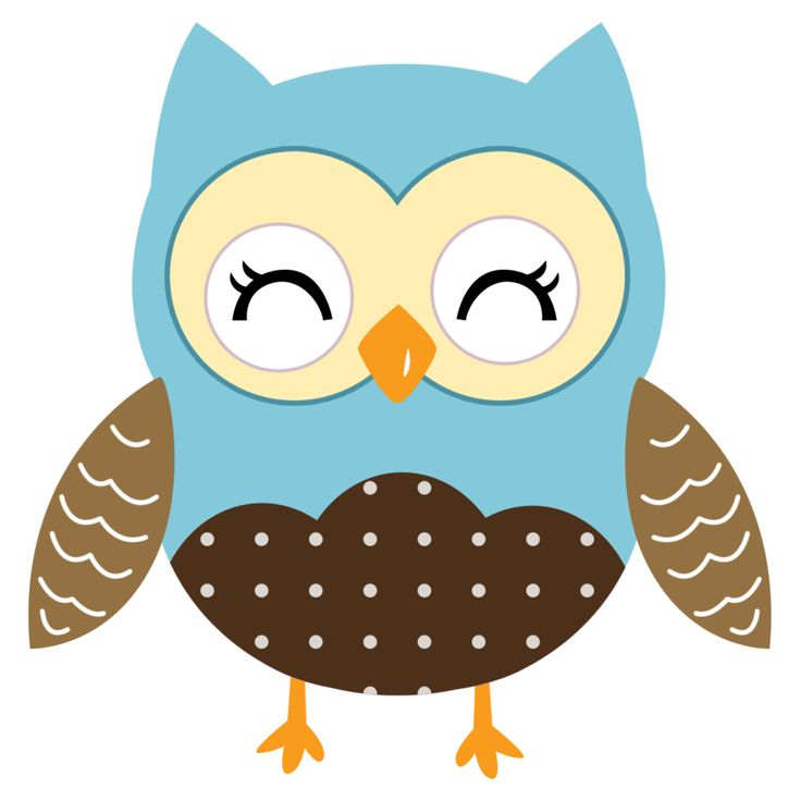 Wisdom clipart night owl Best 483 about ‿✿⁀°••● Owls