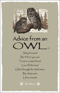 Wisdom clipart night owl Totems Owl