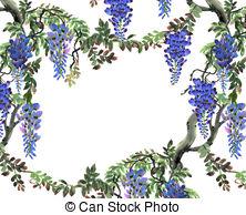 Wisteria clipart Blue Watercolor free  Wisteria