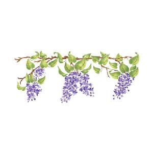 Wisteria clipart border & Stencils: Lilac Designer Lilac