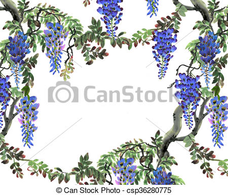 Wisteria clipart drawing Illustration hand blue  wisteria