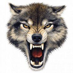 Wolf clipart snarl Pinterest Hledat Wolf Tattoos