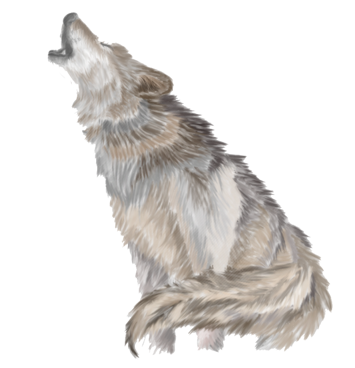 Wolf clipart three PNG Wolves Mart PNG Wolves
