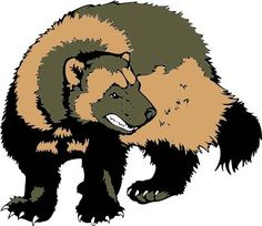 Wolverine clipart animal BBall head Mascots Jersey picture