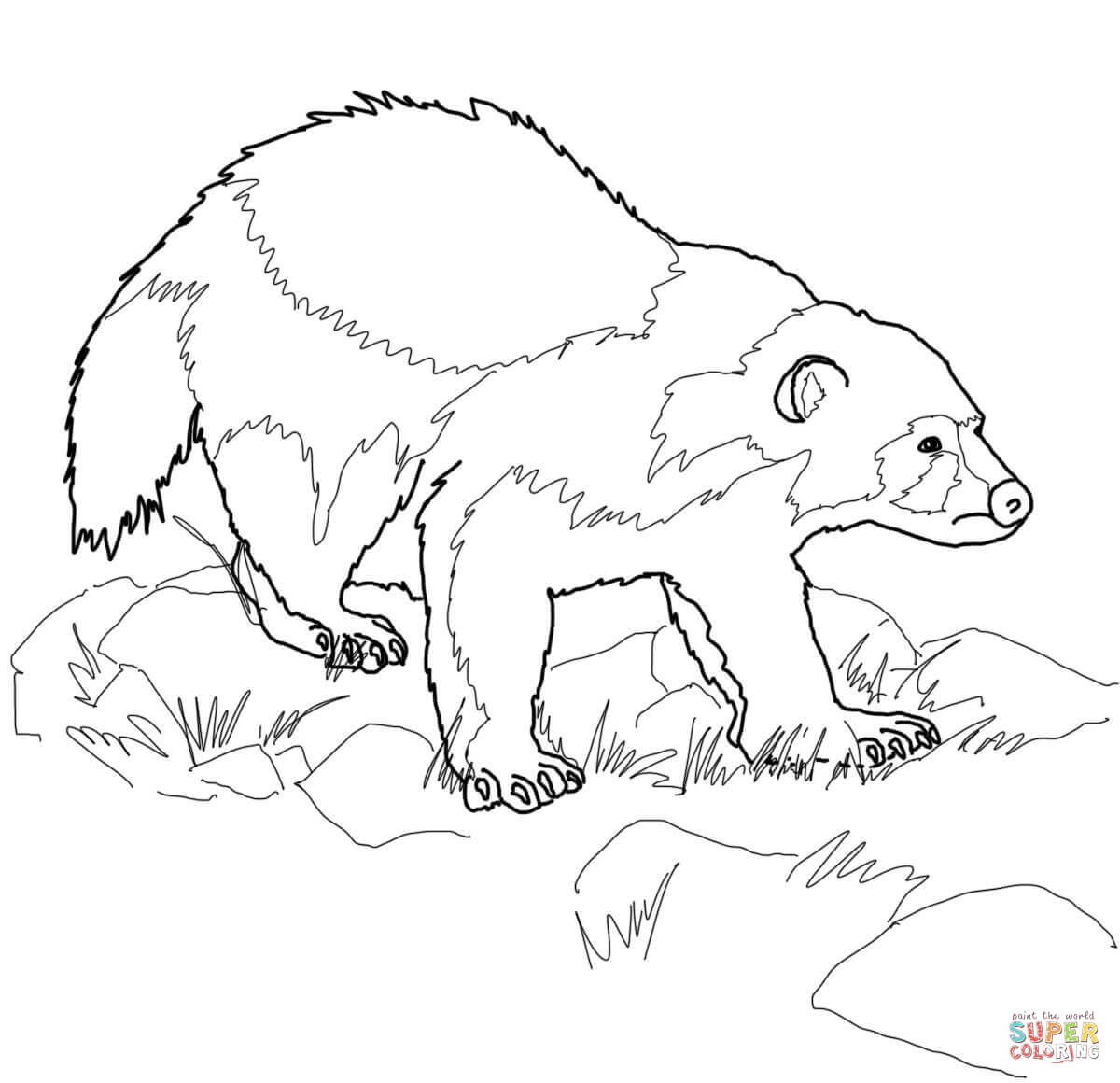 Wolverine clipart animal Animal Clipart  Outline Outline