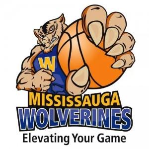 Wolverine clipart basketball BASKETBALL BASKETBALL WOLVERINES MISSISSAUGA MISSISSAUGA