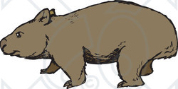Wombat clipart Clipart Free Images Info Clipart