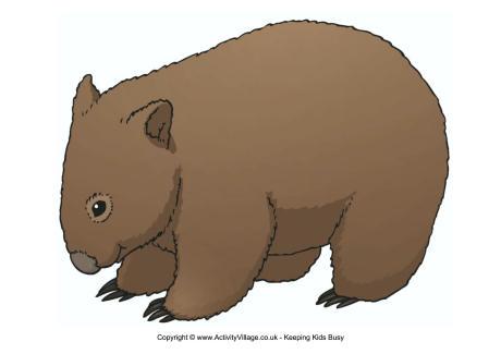 Wombat clipart Wombat wombat%20clipart%20 Clipart Clipart Free