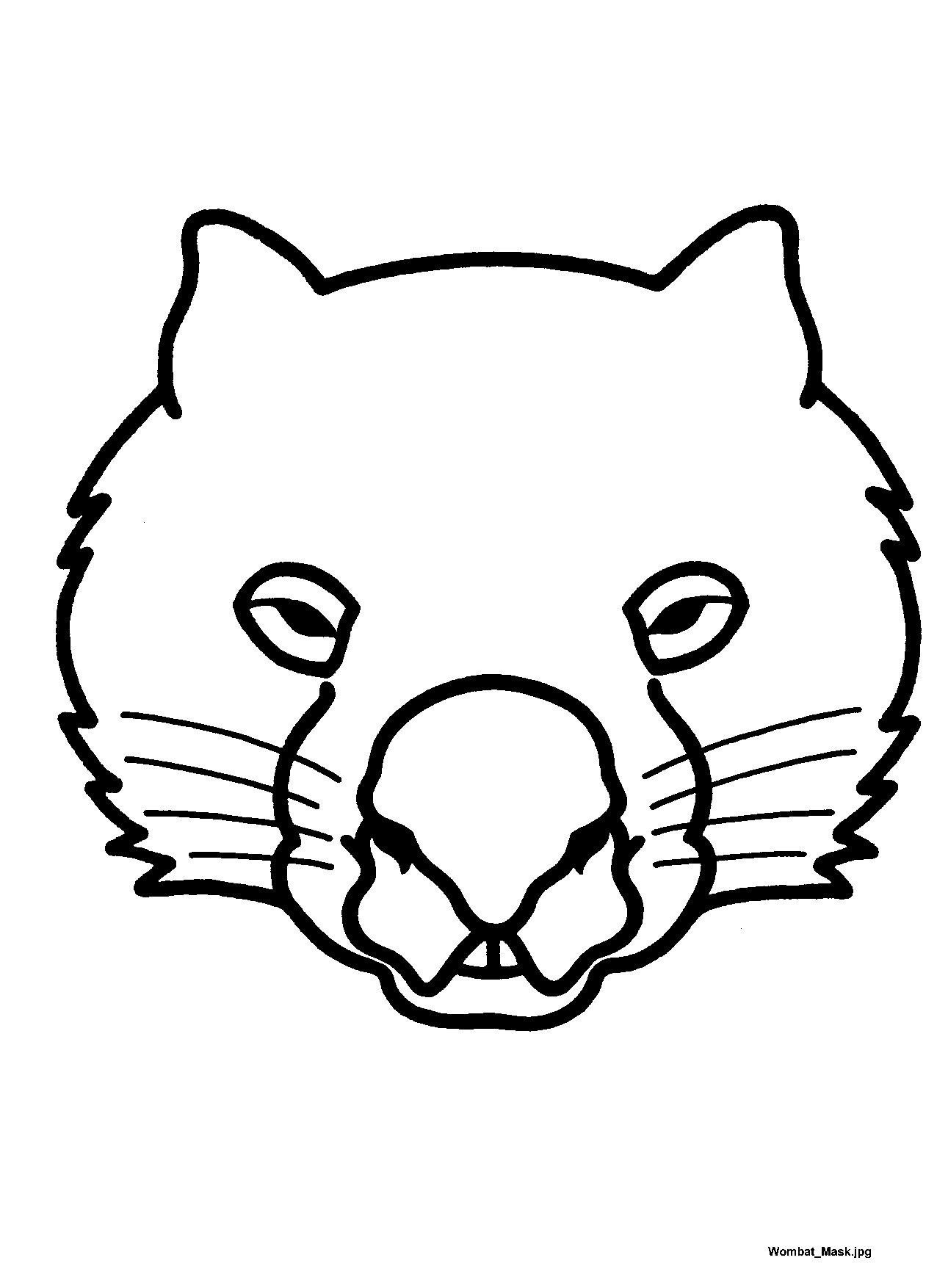 Wombat clipart australian possum Wombat ideas Australian jpg Stew