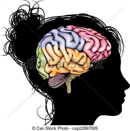 Women clipart brain Brain Illustrations and collection head