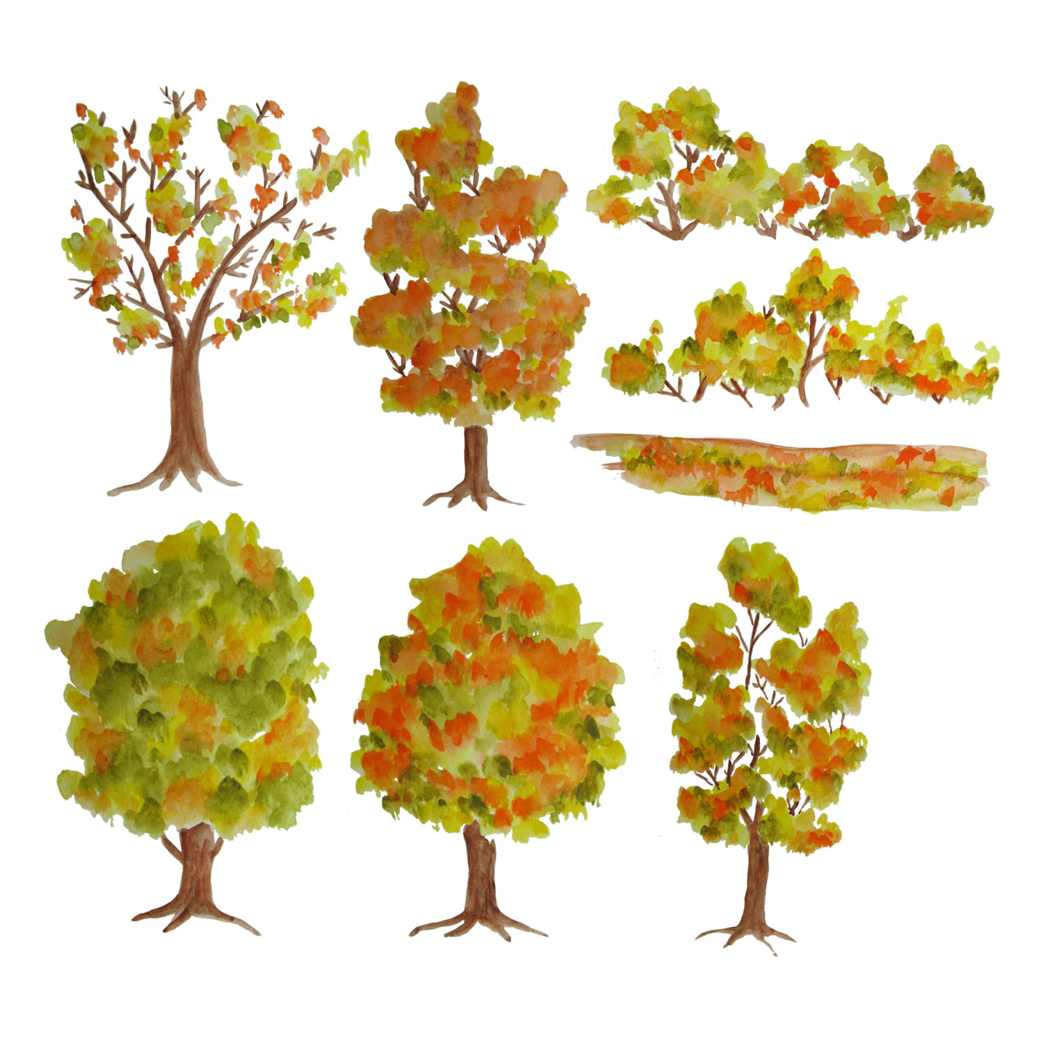 Wood clipart colorful tree Watercolor  is digital file