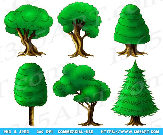 Wood clipart forrest Tree The Forest  Pallet
