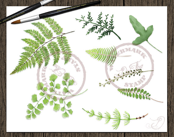 Wood clipart green forest Greenery Clipart Fern Art file