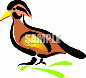 Wood Duck clipart Duck Brown Wood Clipart Royalty
