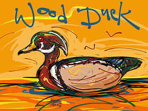 Wood Duck clipart cattails America LaGue Wood Drawing Art