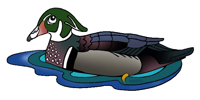 Wood Duck clipart state mississippi Mississippi by Fowl Water Martin