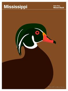 Wood Duck clipart state mississippi Result Fifty Duck Image