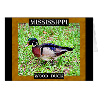 Wood Duck clipart state mississippi Mississippi Duck Card Wood Gifts