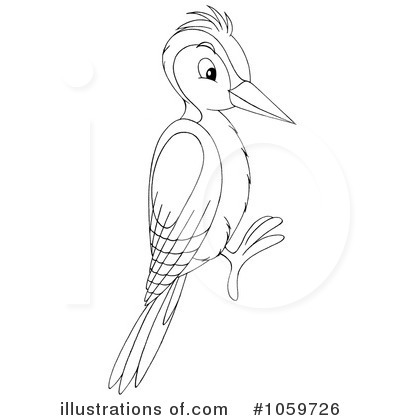 Woodpecker clipart Illustration #1059726 Royalty by Free