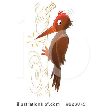 Woodpecker clipart Illustration #226875 Royalty by Free