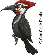 Woodpecker clipart 638 of Woodpecker a Clip