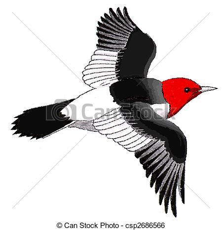 Woodpecker clipart animated Stock Woodpecker csp2686566 Melanerpes Illustration