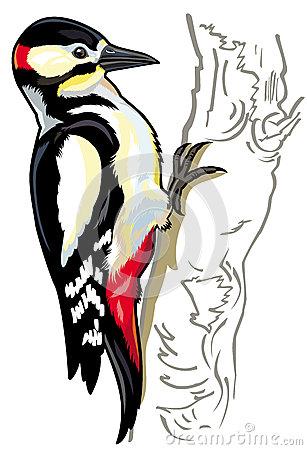 Woodpecker clipart animated Panda Clipart Free Clipart Woodpecker