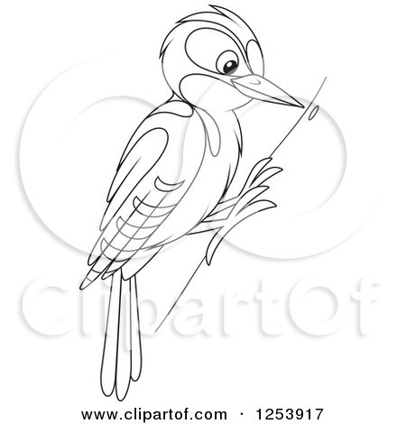 Red Headed Finch clipart black and white #10