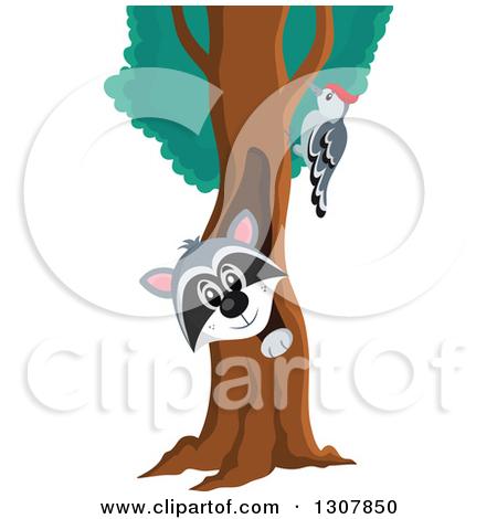 Woodpecker clipart tree In the tree tree the