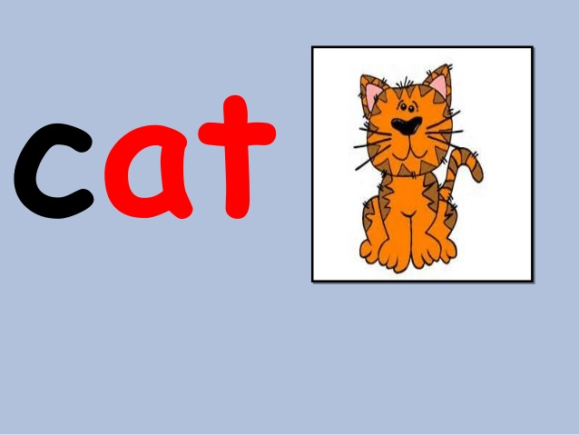 Word clipart cat Family cat word  11