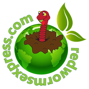 Worm clipart logo Express logo  Urban red