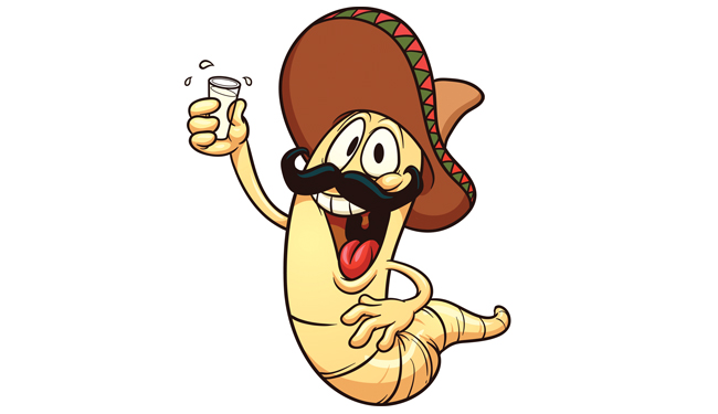 Worm clipart mexican drinking LISTED About TheWorm Alcohol Men