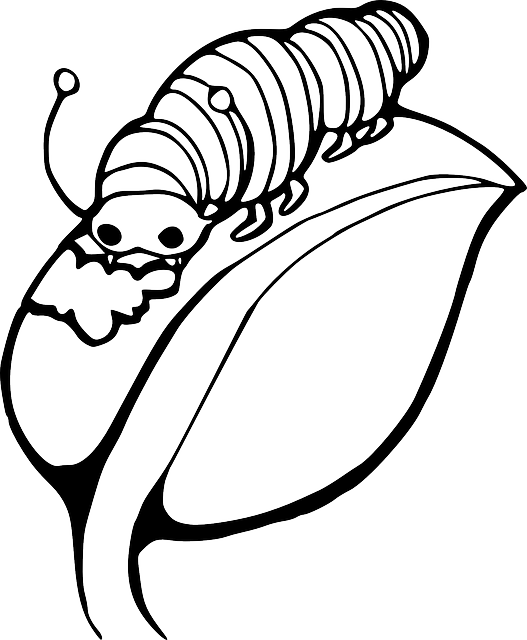 Worm clipart outline #13