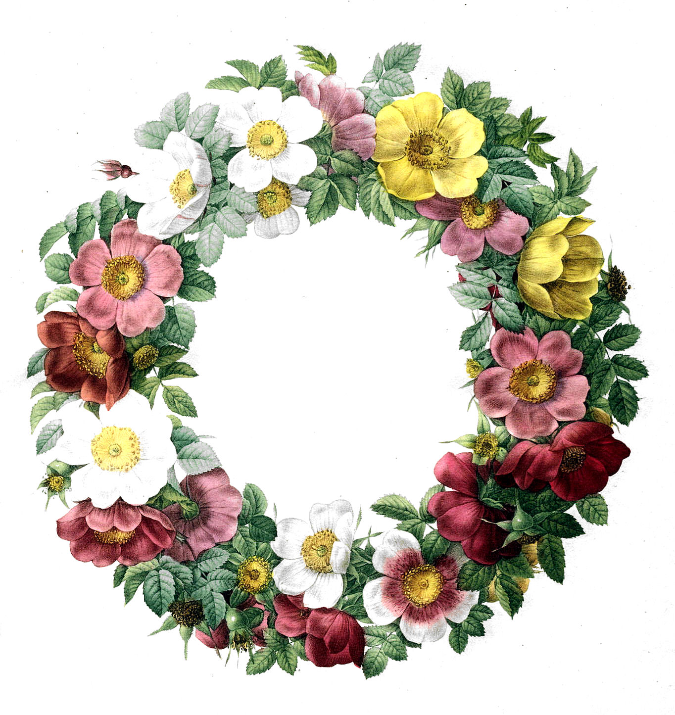 Wreath clipart old pen Free Vintage Rose Clip Wreath