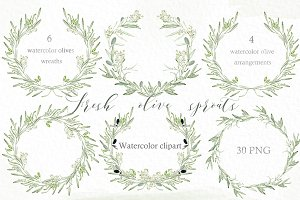 Wreath clipart sage Photos wreath Olive Themes Sage