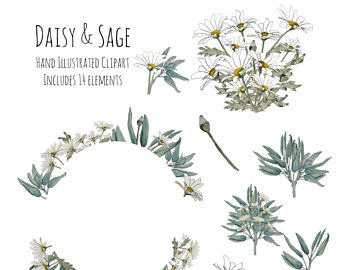 Wreath clipart sage & Pen Clipart wreath Illustration
