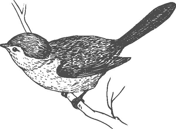 Bird clipart little bird Little clip art art Animal
