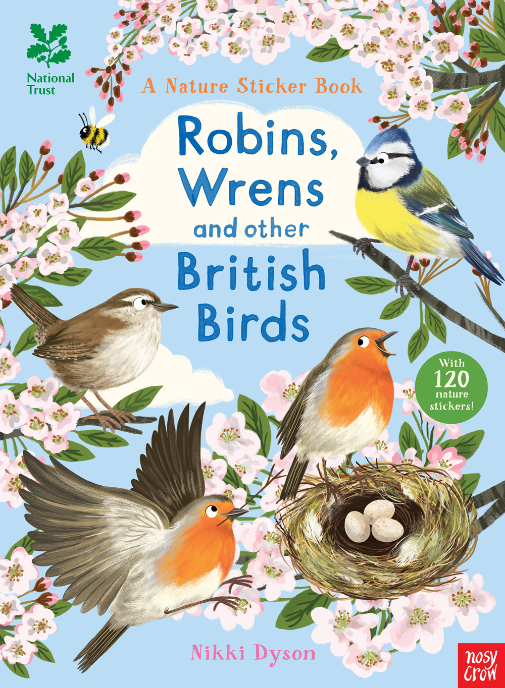 Wren clipart robin bird National Trust Birds Trust Robins